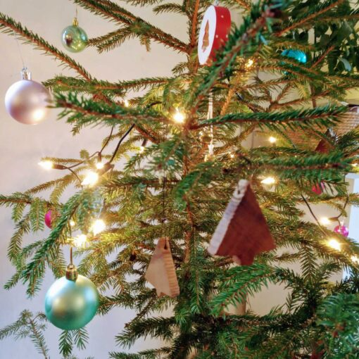 Weihnachtsbäume | Daniél Pfaar Moebelbau